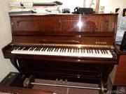 пианино etyde